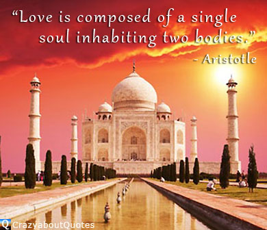 Taj Mahal with love quote from Aristotle.