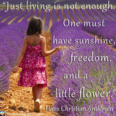 Girl in lavender field with quote about life, freedom and flowers.