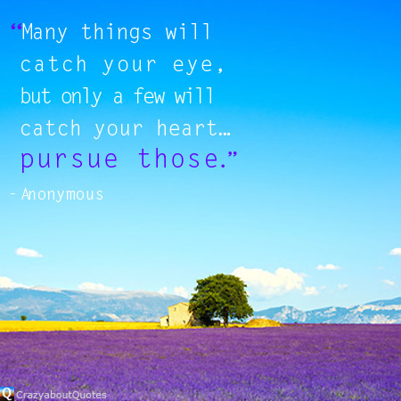 Lavender flowers blooming in Provence, France with quote of the day about passion.