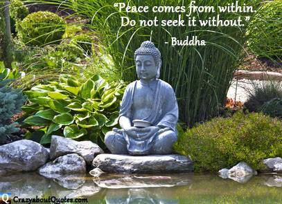 Peaceful garden and pond with Buddha quote