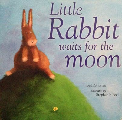 Little Rabbit waits for the moon book cover.