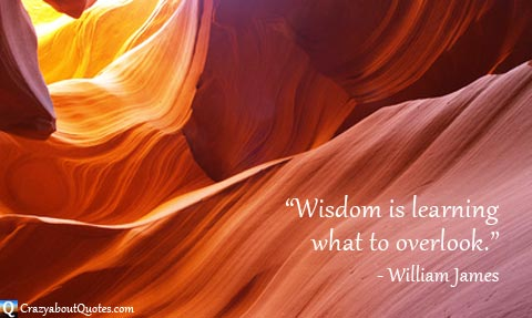 Sunlight creating orange glow from inside canyon with William James quote